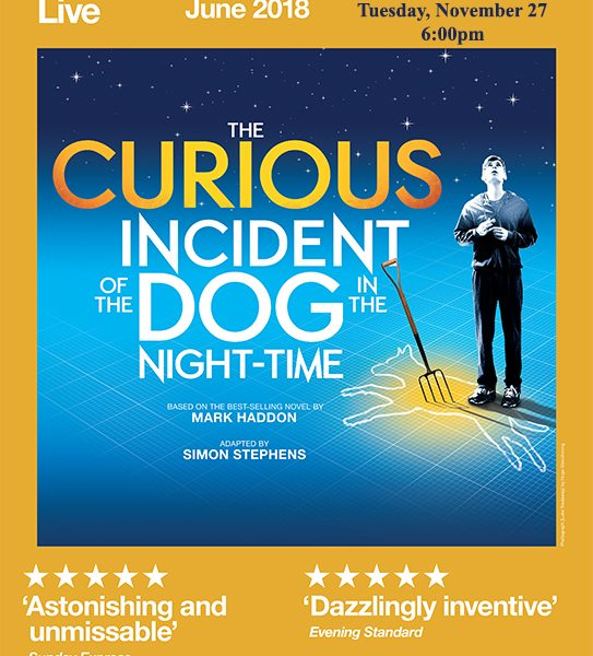 National Theatre – The Curious Incident of the Dog in the Night-Time